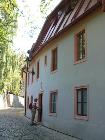 Photo of Golden Tree Prague