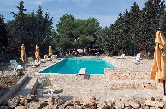 Masseria Artemisia: La piscina
