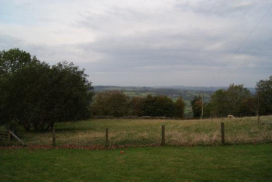 Brynheulog B&B: The view