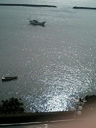 Ibusuki Coral Beach Hotel : 窓からの風景