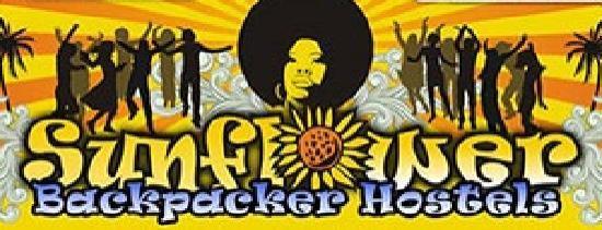 Sunflower City Backpacker Hostel & Bar: Sunflower Backpackers Hostels Rimini Italy
