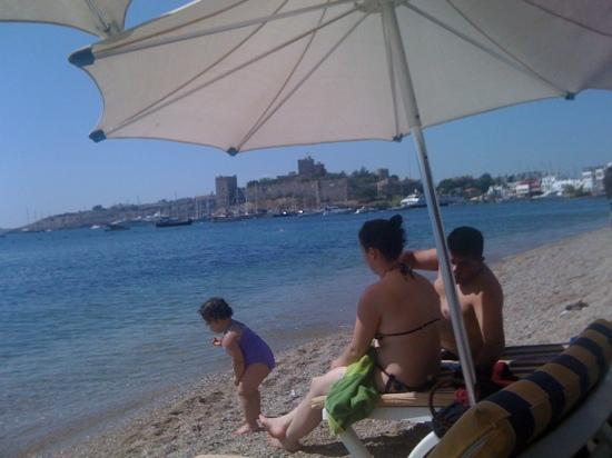 Ayaz Aqua: view of Bodrum castle from a restaurant
