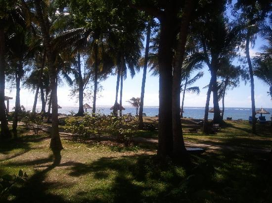 Diani Sea Resort: view from room