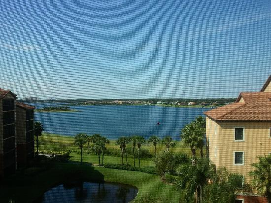 Westgate Lakes Resort & Spa: Serene morning view from my studio rental.