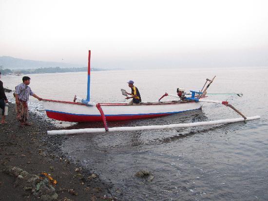 Kubu Lalang: dolphin watching boat