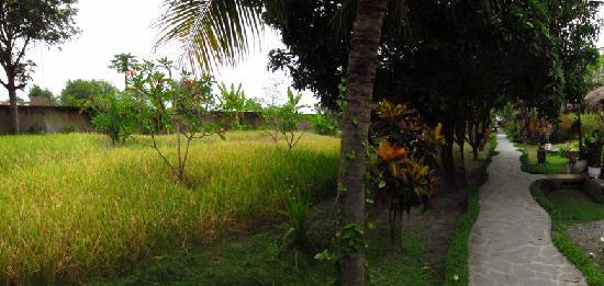 Kubu Lalang: pathway to the beach and restaurant