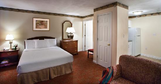 Luxbury Inn & Suites: Studio Suites