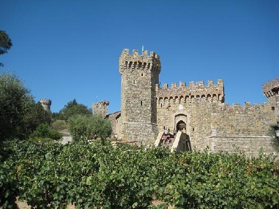 Apex Limousine Transportation: Castello di Amorosa