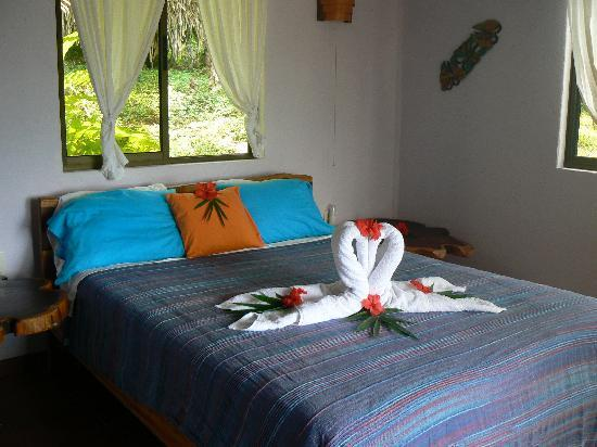 Agua Vista: Morfo Bed