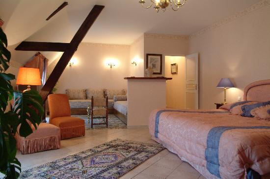 Hostellerie Domaine de Montgivroux : Suite