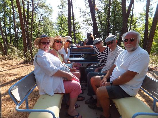 TerraVentoux: The horse drawn carriage ride