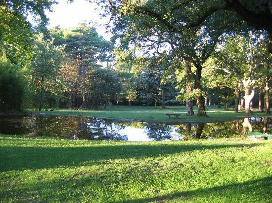 Chateau Juvenal: park and lily pond
