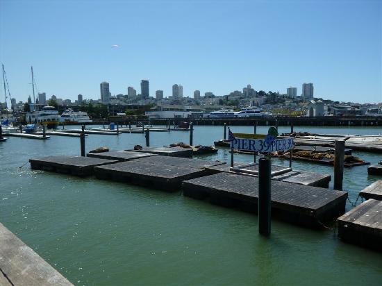 Fisherman's Wharf: SF vue du pier !!