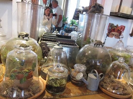 Chambre d'Autres et Suite du Merle Blanc : Le jardin enfermé