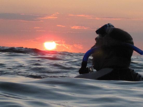 写真ハナウマ湾自然保護区枚