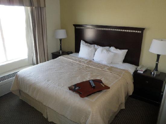 Comfort Suites University: Bed