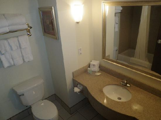 Comfort Suites University: Bathroom