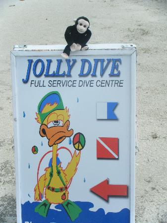 Jolly Dive Center: Jolly Dive