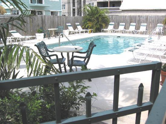 Flamingo Motel: Clean tropical Pool