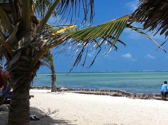 jacaranda beach resort watamu