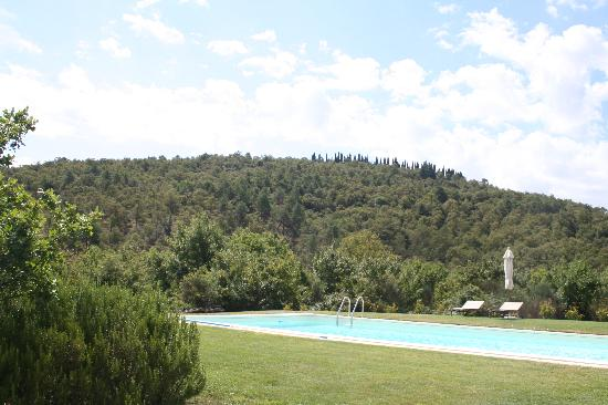 Relais Il Vallone: the pool set amongst forest covered hills