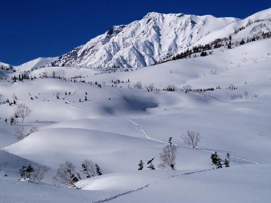 Hakuba Onsen Ryokan Shiroumaso: snow mountain