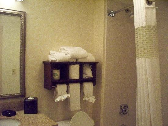 Hampton Inn Indianapolis Downtown Across from Circle Centre: Bathroom