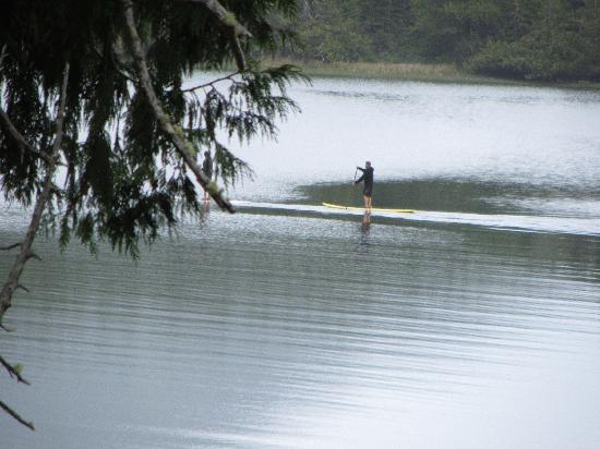 Point West Cottages: Bay Paddleboarder