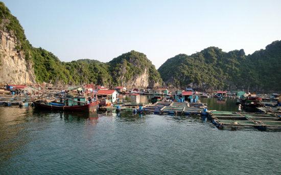Vietnam Group Tour: Halong Fishing Village