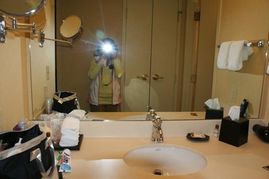 St. Louis City Center Hotel: vanity suite 831