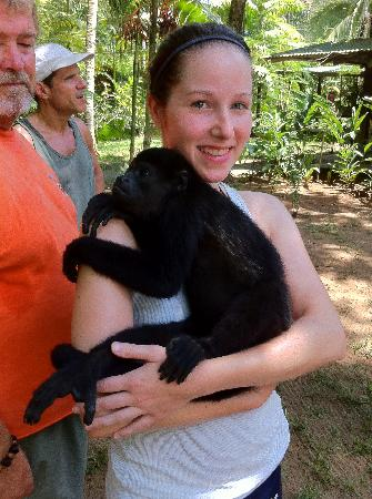 Jaguar Rescue Center: holding the howler monkeys