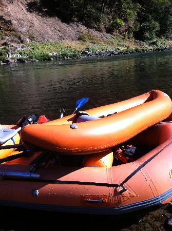 Morrisons Rogue River Lodge: Morrison Boats