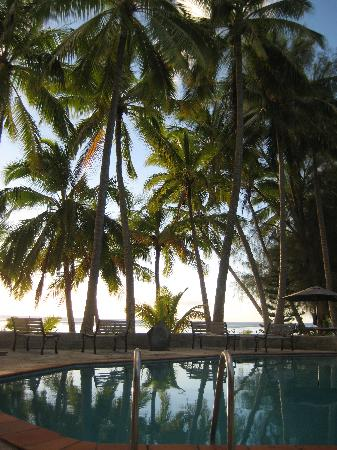 Sunhaven Beach Bungalows: swiming pol view