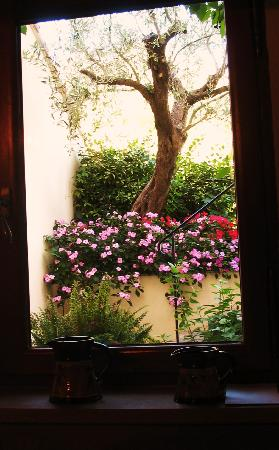 Limoux, Francia: Looking out of the kitchen window