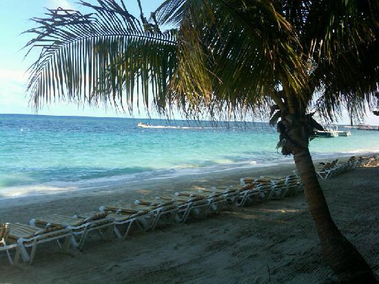 Mayan Princess Beach Dive Resort La Playa Del Hotel