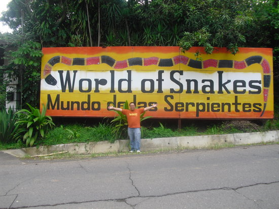 World of Snakes
