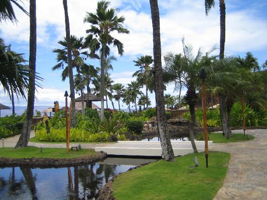 Sheraton Maui Resort & Spa: the grounds are beautiful