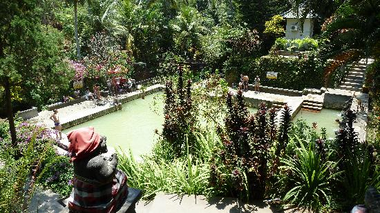 Singaraja, Indonesië: At the Springs