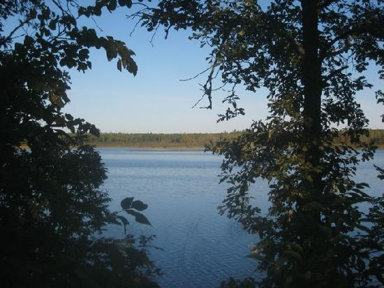 Wood Haven Resort: View of the lake