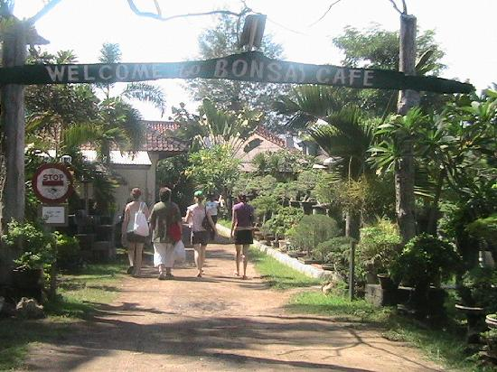 Sanur Beach: entrance to Bonsai cafe on the beach
