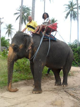 Chaba Cabana Beach Resort: Elephant trekking...NO dejen de montarlos a ellos!!!