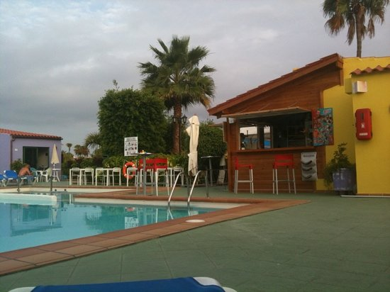 Tropical La Zona: Pool and Bar