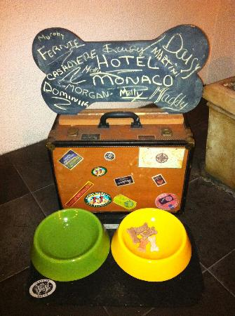 The Marker San Francisco, A Joie de Vivre Hotel: The welcome treats for dogs!
