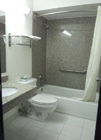 Super 8 Tuscaloosa : Bathroom