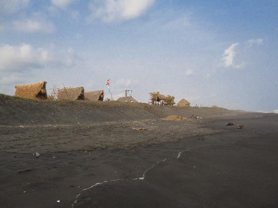 Paredon Surf House: The beach