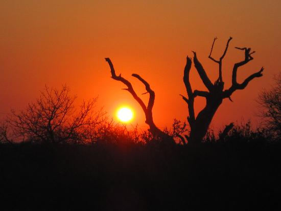 Tremisana Game Lodge: Sunrise in Balule
