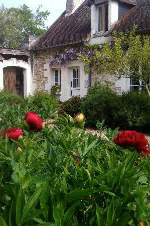 La Cadoise: garden