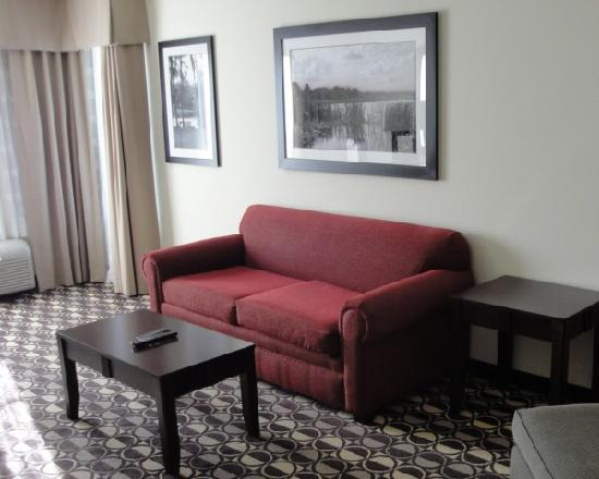 Holiday Inn St. Louis-Fairview Heights: Living Area 2