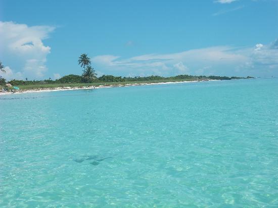 Big Pine Key, FL: Great views