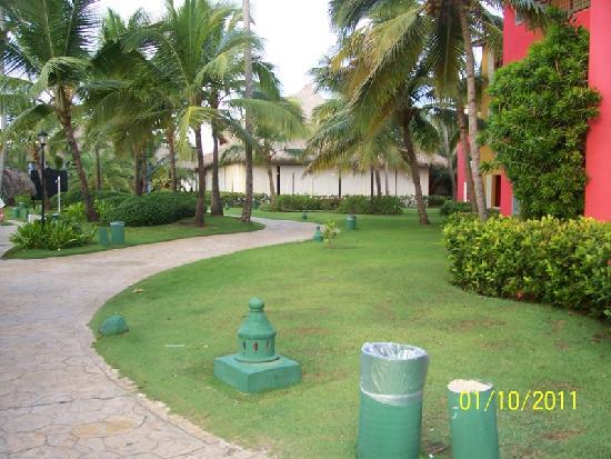 Caribe Club Princess Beach Resort & Spa: the buffet restaurant